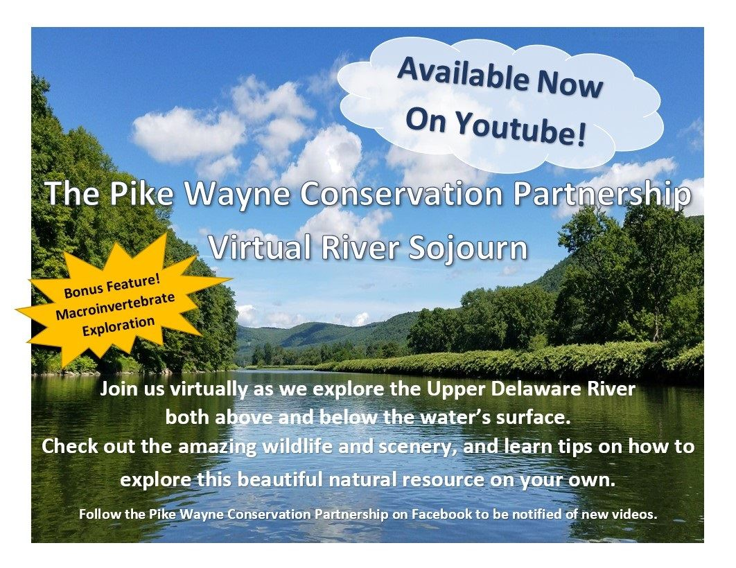 An image of the Delaware River announcing a virtual River Sojourn via Facebook videos.